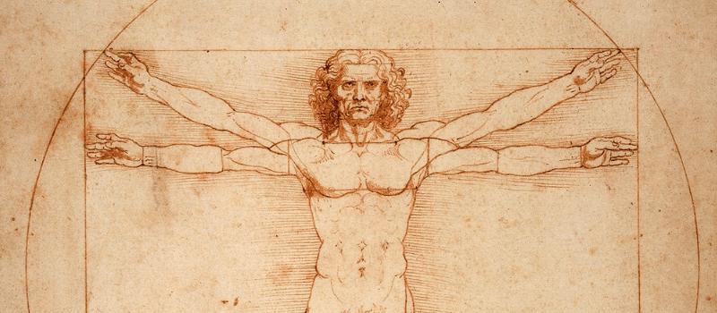 Leonardo da Vinci, interdisciplinary